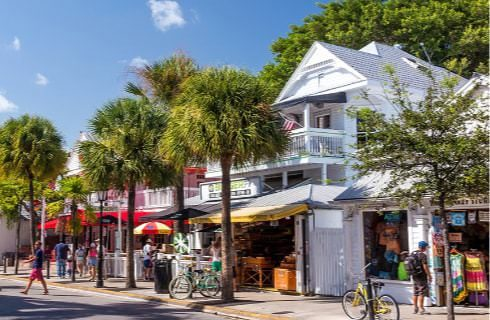 Store fronts on a street surrounded by palm trees and other trees with people shopping